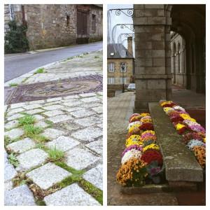 montage photo pour annonce réunion publique sur l'utilisation des produits phytosanitaires et le fleurissement de la commune le 3 décembre 2015 à 20h salle Rougeyron.
