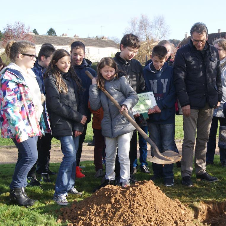 Le conseil municipal des enfants plante un pommier samedi novembre 2015