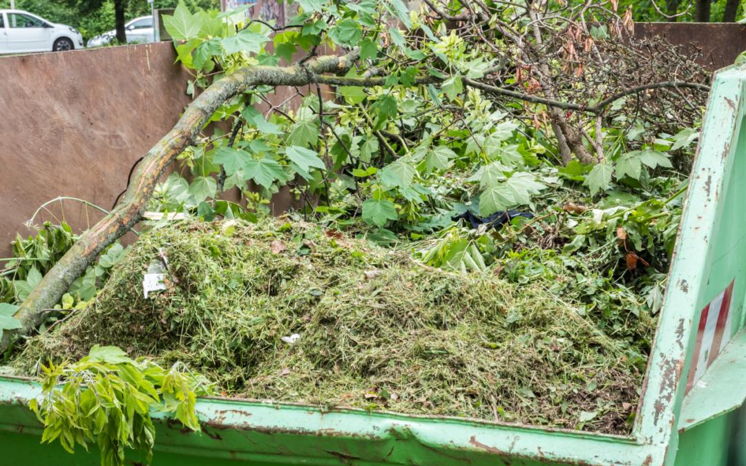Déchets verts : bonnes pratiques et collecte en porte à porte